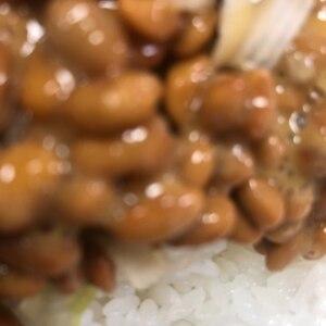 みょうが納豆