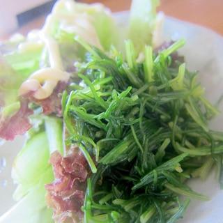 おかひじきとレタスのサラダグリル