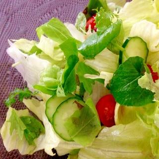 基本のグリーンサラダとオリーブオイルドレッシング
