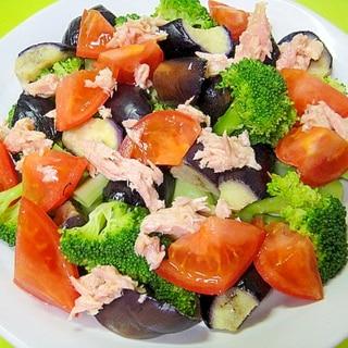 揚げ茄子とブロッコリーツナのサラダ