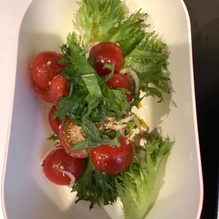 トマト しらす サラダ