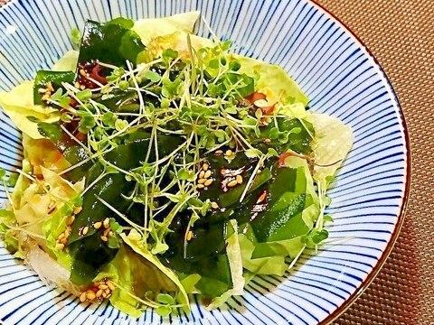 スプラウト海藻サラダ