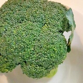 ブロッコリーの長持ち保存方法