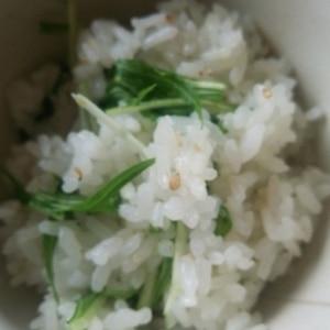 <定番シリーズ>超簡単なのに大人気!水菜ご飯
