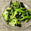 サラダ菜の韓国風サラダ