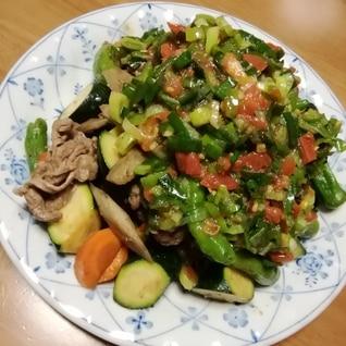 たっぷり野菜と牛肉炒め~ネギ塩トマトだれがけ~