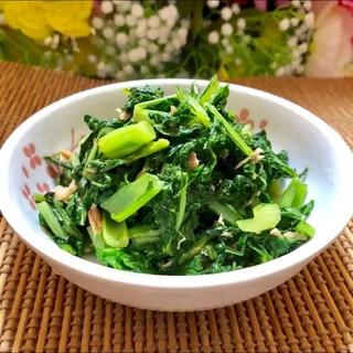 沖縄のチキナー炒め(からし菜)