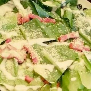 春キャベツのシーザーサラダ