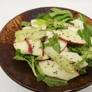 さわやかぁ〜 りんごとセロリのさっぱりサラダ