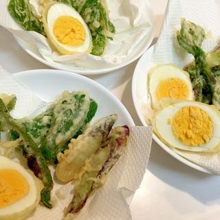 茹で卵と☆旬の山菜の天ぷら
