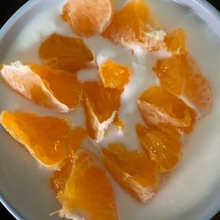 甘麹デコポンヨーグルト生姜風味