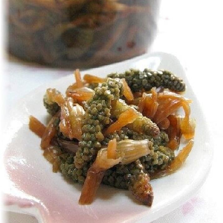 ほんのり桜色・土筆(つくし)の甘酢漬け