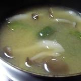 良いコンビ☆しめじ&ピーマンのお味噌汁