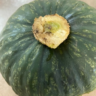 丸ごとかぼちゃの冷凍保存