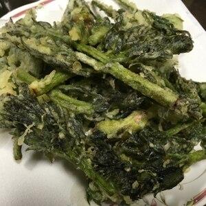 山うどの一番簡単で一番おいしい食べ方エヘン!