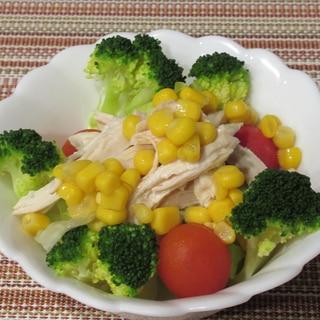 ほぐし鶏むね肉と野菜のサラダ