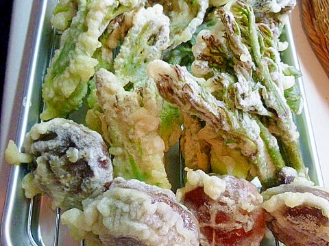 天ぷら粉使用で簡単に♪タラの芽の天ぷら