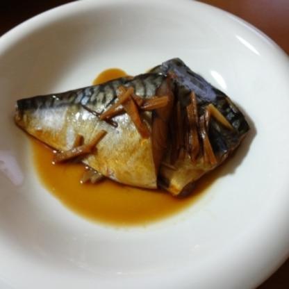 ご飯がすすみますね! 生姜たっぷりで、とても美味しくいただきました♪
