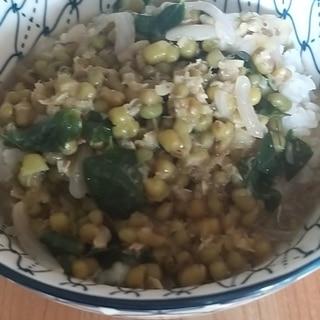 フィリピン料理:モンゴ(緑豆のスープ)