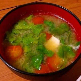トマトとパクチーと豆腐の味噌汁