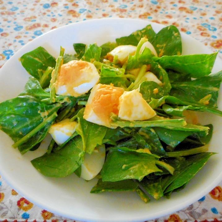 サラダ ほうれん草 ほうれん草は生食できる?サラダで食べるとシュウ酸が危険?