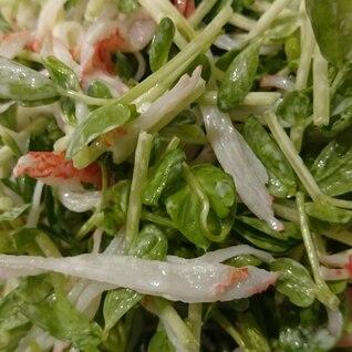 豆苗とカニかまのサラダ