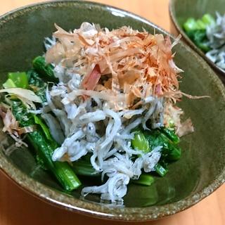 さっぱり美味しい!しらすと小松菜のおひたし