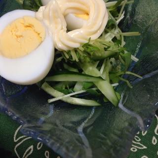 かいわれ大根のシンプル♪生野菜サラダ(*^^*)