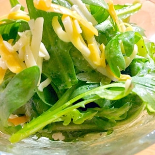 生で美味しい♪春菊とチーズのサラダ