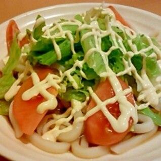 ●野菜たっぷりサラダうどん●