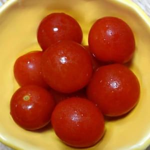 湯向きしないでもOKなミニトマトのピクルス