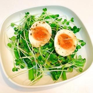 アスパラ菜とかいわれ大根と半熟卵の♪チョレギサラダ