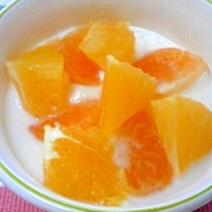 柑橘日米協奏☆みかん&オレンジヨーグルト♪