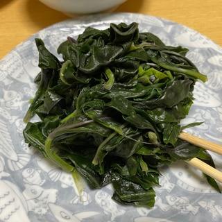 【加賀野菜】金じ草のおひたし