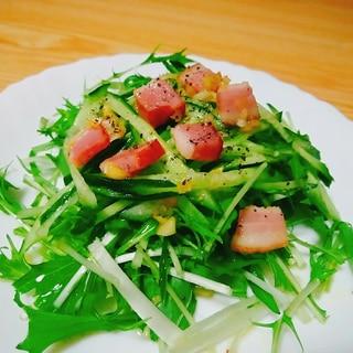 ガーリックベーコンで!きゅうりと水菜のサラダ