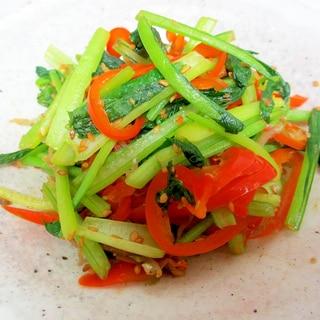 小松菜とピーマンのジャコ炒り