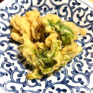 ひよこ豆粉でふきのとうの天ぷら
