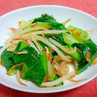 小松菜ともやしの桜えび炒め ほんだし味