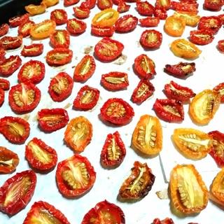 ミニトマト消費*セミドライトマト