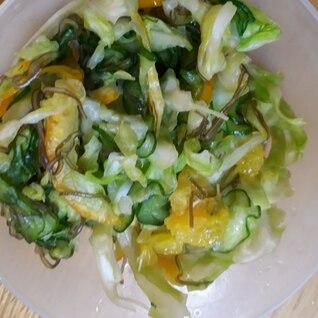 野菜とスイートスプリングのつけもの
