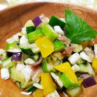 夏野菜の浅漬けサラダ(山形だし風)