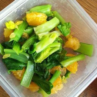 小松菜といよかんのサラダ