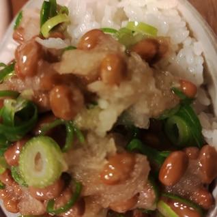 ねぎと大根おろしと納豆かけご飯