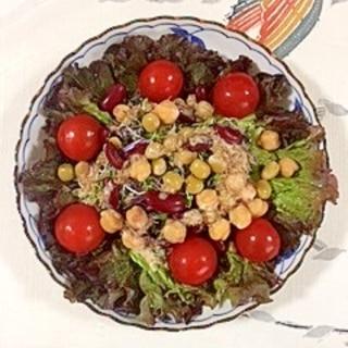 サニーレタス とミックスビーンズのサラダ