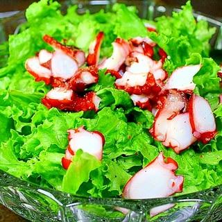 レタスと酢蛸のサラダ