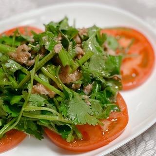 ツナとパクチーのエスニック風サラダ