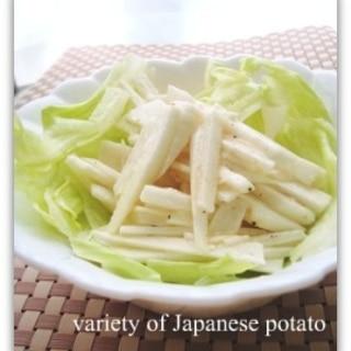 オリーブオイルでおいしい☆大和芋の千切りサラダ