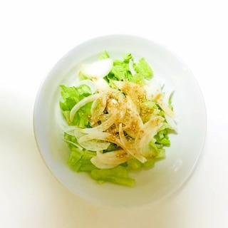 新玉ねぎとレタスの胡麻ドレサラダ
