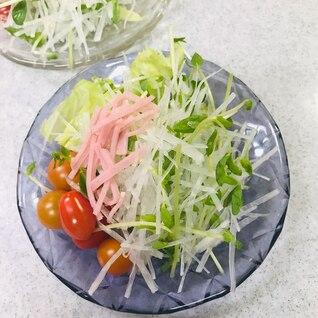 ハリハリほそほその大根と豆苗のサラダ