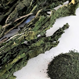 緑綺麗な乾燥大根葉